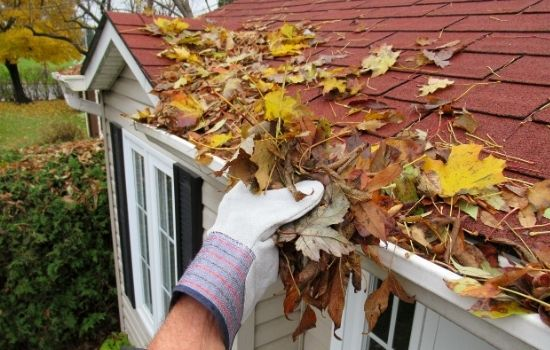 5 Roof Maintenance Steps Every Homeowner Should Take